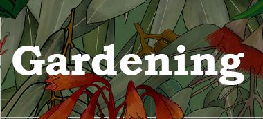 Gardening gift guide 2019