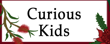 Curious Kids GG 18