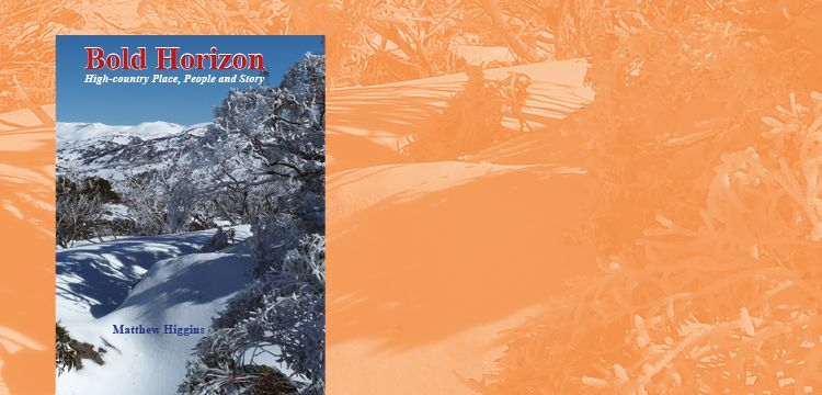 Bold Horizon: BOOK LAUNCH