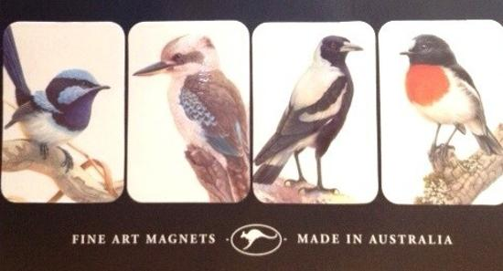 Australia's Popular Birds: Fine Art Magnets