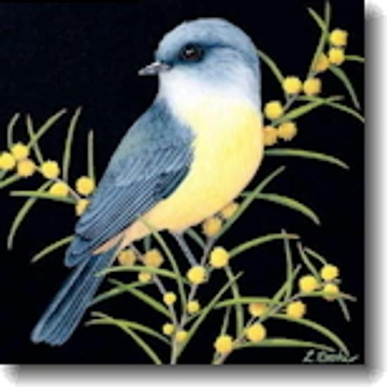 Small Card - Eastern Yellow Robin & Wattle Blossom