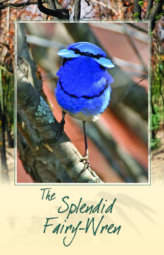 Card - Splendid Fairy-Wren Bird Call