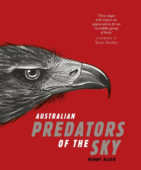 Australian Predators of the Sky