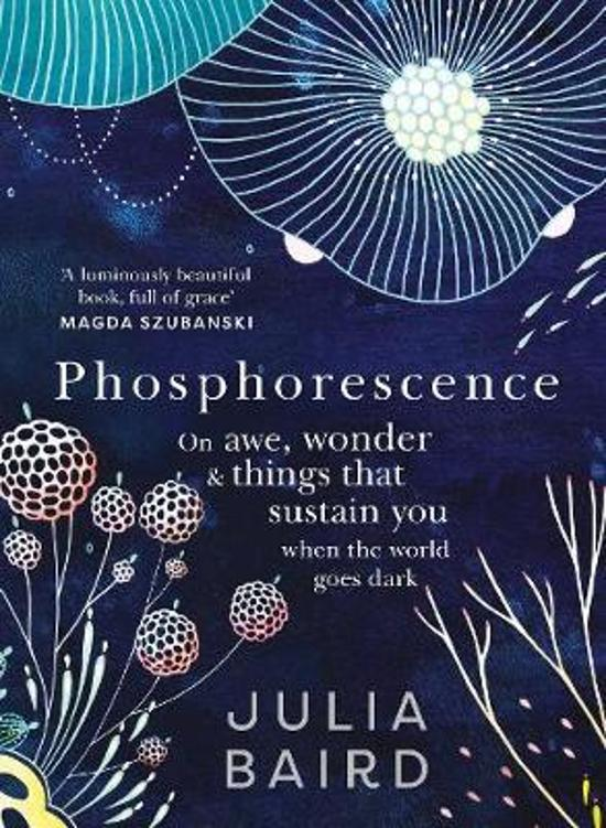 Phosphorescence - On awe, wonder and things that sustain you when the world goes dark