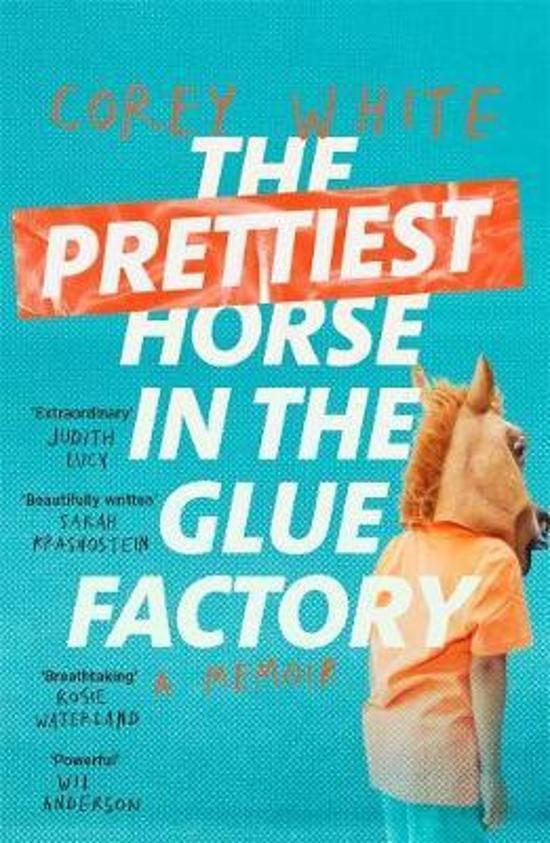 Prettiest Horse in the Glue Factory - A Memoir