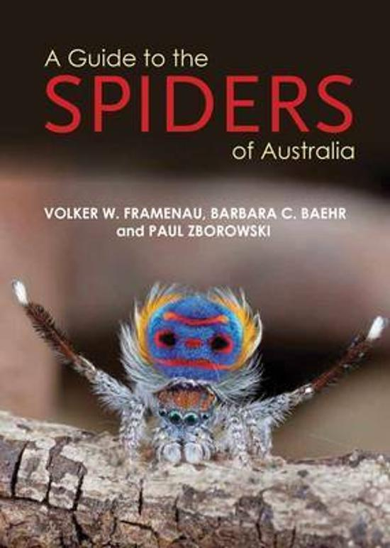 Guide to Spiders of Australia