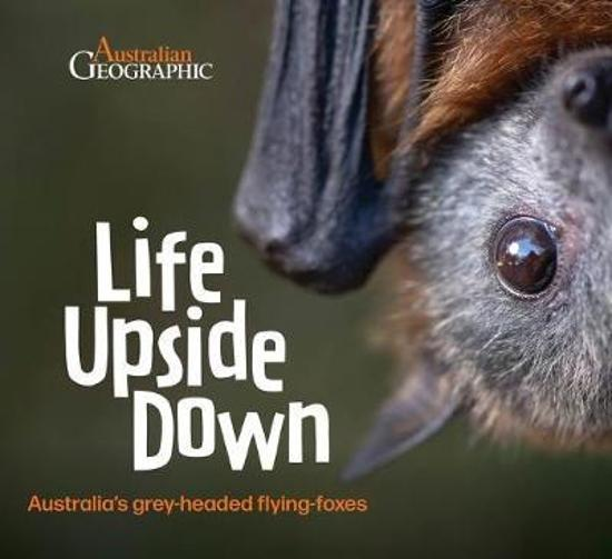 Life Upside Down - Australia's Grey-headed Flying-foxes