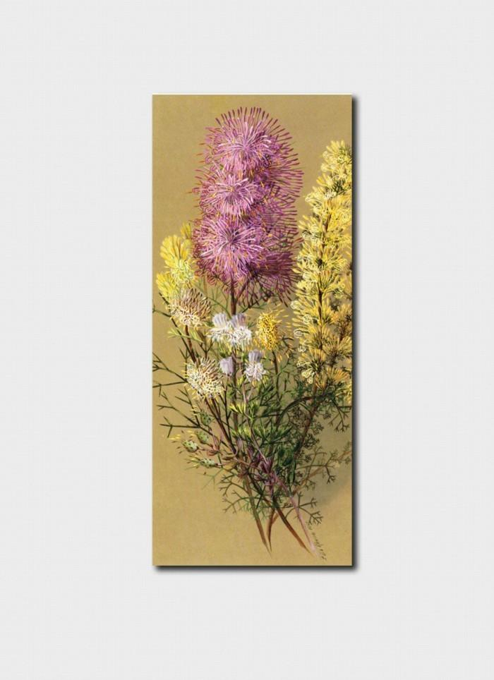 Bookmark - Rose Cone Flower, Conesticks, Pixie Mops, Cone Bush Bookmark