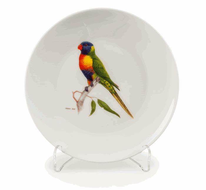 Rainbow Lorikeet China Plate