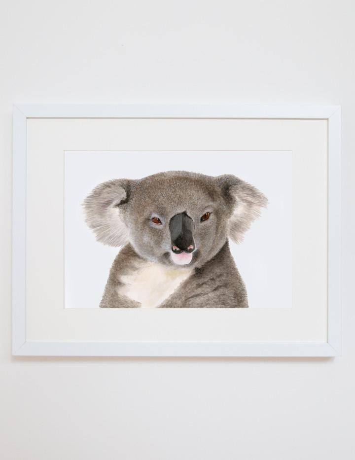 Print - A4 - Kev the Koala - Unframed