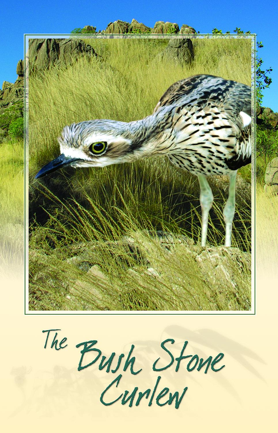 Card - Bush Stone Curlew Bird Call