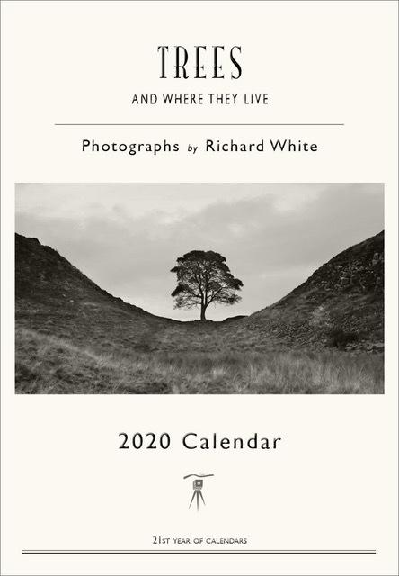 2020 Calendar - Trees and Where They Live