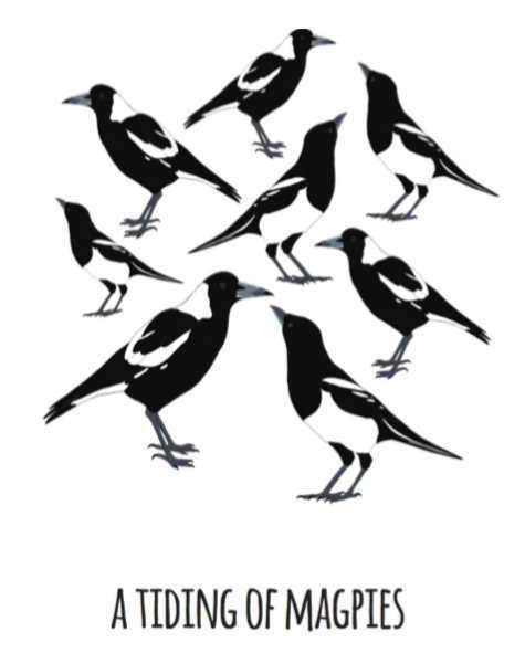Print - Tiding of Magpies - A4