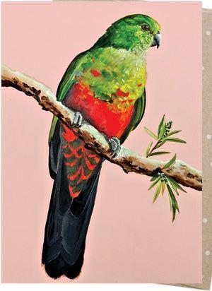 Card - King Parrot Flo