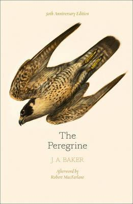 Peregrine: 50th Anniversary Edition - Afterword by Robert Macfarlane
