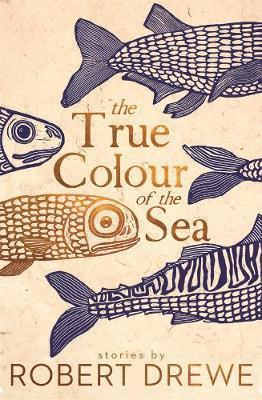True Colour of the Sea