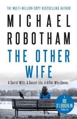 Other Wife - Joe O'Loughlin Book 9