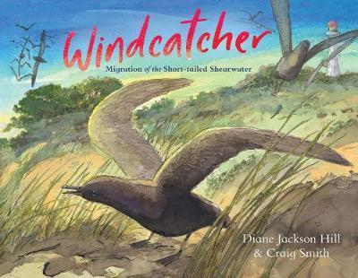 Windcatcher - Migration of the Short-tailed Shearwater