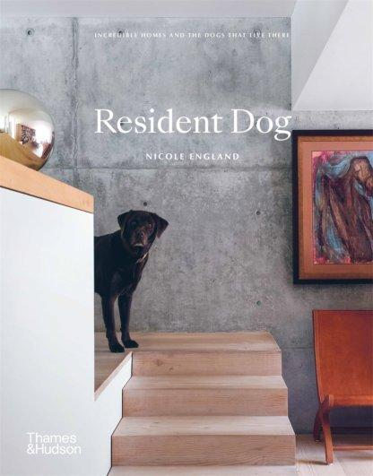 Resident Dog - Incredible Homes and the Dogs That Live There