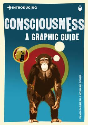 Introducing Consciousness - A Graphic Guide