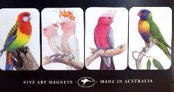 Australia's Colourful Parrots: Fine Art Magnets