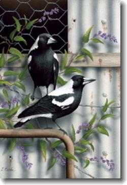 Card - Magpies and Purple Hardenbergia