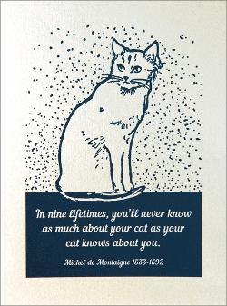 Card - Cat Knows About You