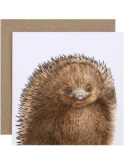 Card - Eddie the Echidna
