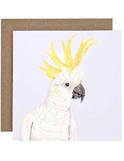 Card - Connie the Cockatoo