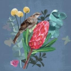 Card - Bird on Flowers with Blue Background