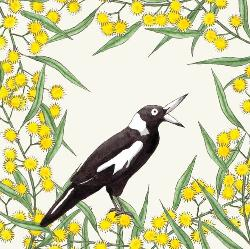 Card - Squawking Magpie and Wattle (Small)
