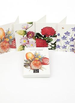 Gift Card Box - 6 Wildflower Assorted Gift Cards