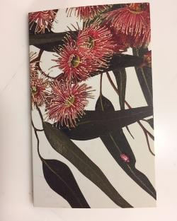 Coral Gum - Gift Tag