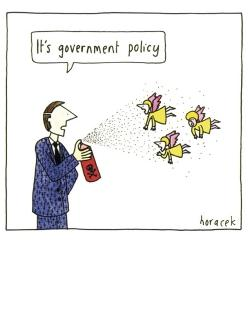 Card - Government Policy