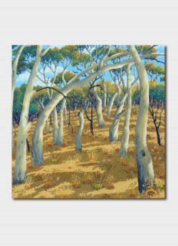 Card - Summer Shadow, Mount Majura
