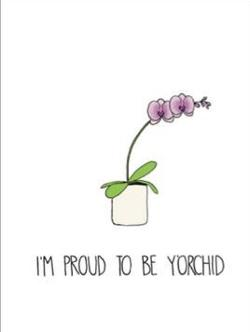 Card - Proud to be Y'Orchid