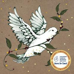 Christmas Card Pack - White Dove