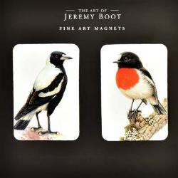 Magnet Pair - Magpie and Scarlet Robin