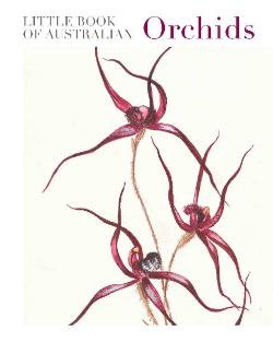 Little Book of Australian Orchids