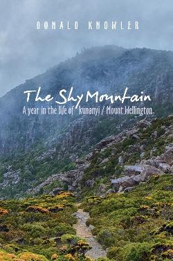 Shy Mountain