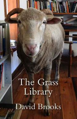 Grass Library