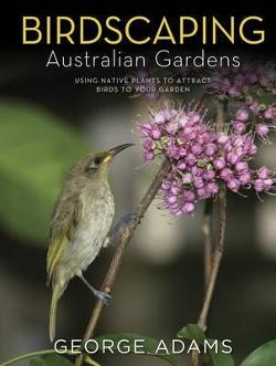 Birdscaping Australian Gardens - Using Native Plants to Attract Birds to Your Garden