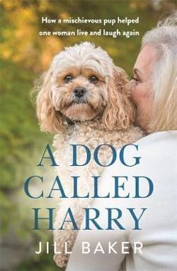 Dog Called Harry