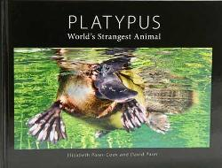 Platypus - World's Strangest Animal