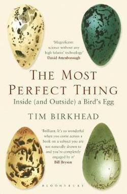 Most Perfect Thing - Inside (and Outside) a Bird's Egg