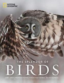 Splendor of Birds - Art and Photography From National Geographic