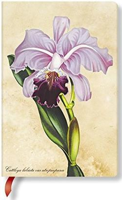 Notebook, Painted Botanicals, Brazillian Orchid, Mini Lined