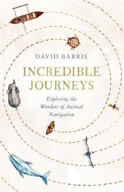 Incredible Journeys - Exploring the Wonders of Animal Navigation