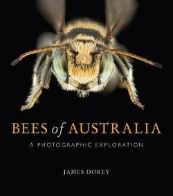 Bees of Australia - A Photographic Guide