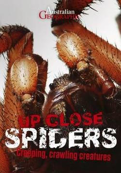 Up Close Spiders